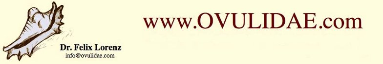 ovulidae.com homepage
